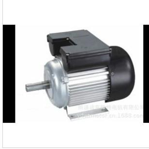 YL双值电容电动机图片