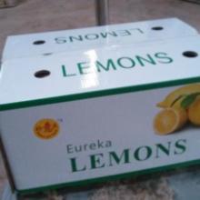 """供应好意头""""牌有机黄柠檬"""