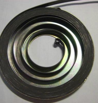 扭簧图片/扭簧样板图 (2)
