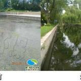 供应元大都的护城河被污染了