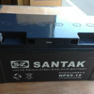 铅酸免维护蓄电池图片
