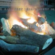 最牛逼的电壁炉火焰3D壁炉图片
