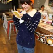2013冬装新款韩版女装单排扣蕾丝裙图片