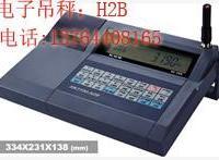 供应XK3190—H2B电子吊磅,XK3190—H2B销售