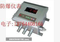 供应XK3190防爆仪表销售,XK3190防爆电子称