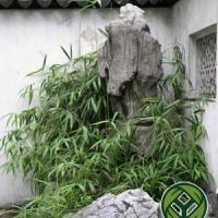 供应杭州假山塑石