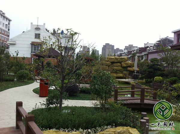 供应怎样布置屋顶花园