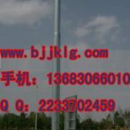 供应通纳7米高速路立杆港口摄像机立杆  机场立杆 边防立杆 海港立杆