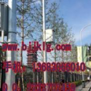 5.5米灯杆立杆镀锌立杆喷塑立杆图片
