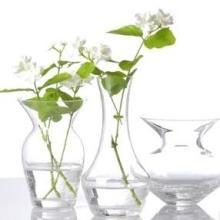 供应透明亚克力花瓶/塑料圆形花瓶/亚克力花瓶/有机玻璃花瓶/亚克力瓶