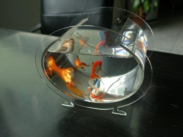 生态鱼缸 生态鱼缸供货商 供应鱼缸 生态鱼缸 高清图片
