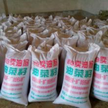 供应除过杂质的油菜籽
