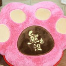 供应2015新款贝喜熊掌抱枕热水袋双插手电暖袋卡通充电热水袋