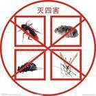 工厂灭鼠灭四害服务,除四害公司,工厂灭鼠杀虫服务