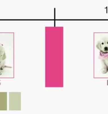 染色磨毛布图片/染色磨毛布样板图 (1)