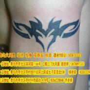 纹身培训纹绣培训双眼皮培训图片