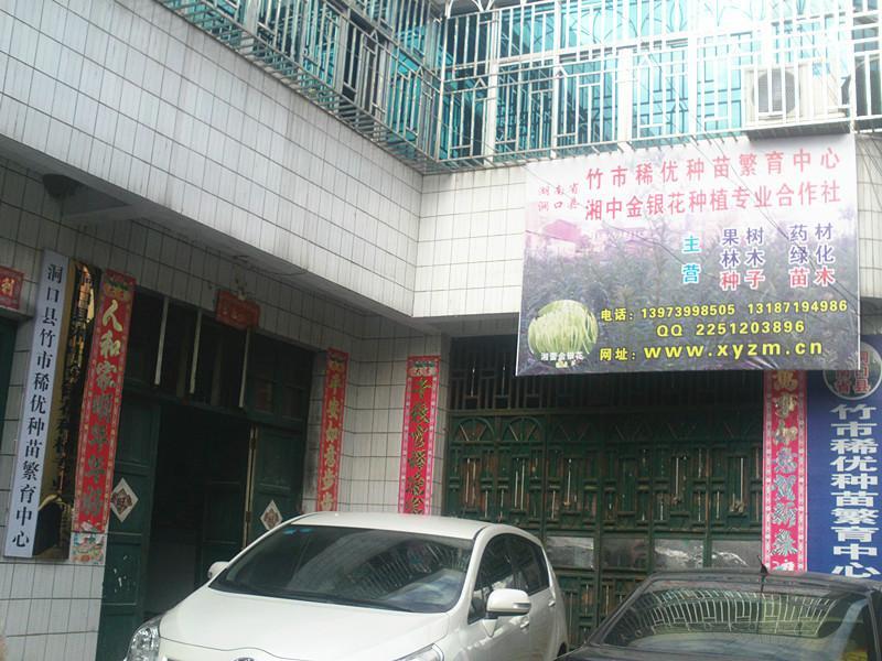 湖南省洞口县竹市稀优种苗繁育中心
