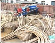 供应汤阴县顶管施工,汤阴县专业顶管工程报价,汤阴县定向钻顶管施工队伍