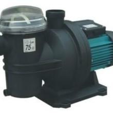 供应ESPA西班牙亚仕霸水泵silen专业按摩池泵水处理设备
