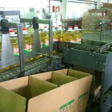 供应广州国诺专业设计开箱封箱包装线(后道包装自动化)批发