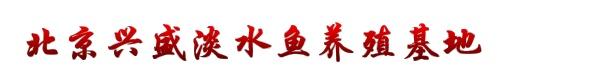 北京兴盛淡水鱼养殖基地