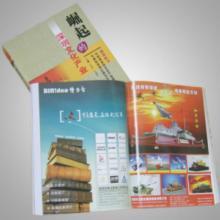 供应标志LOGO视觉形象画册彩页设计深圳能源手机服饰品牌图片